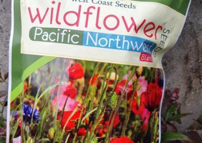 Wildflower Blend